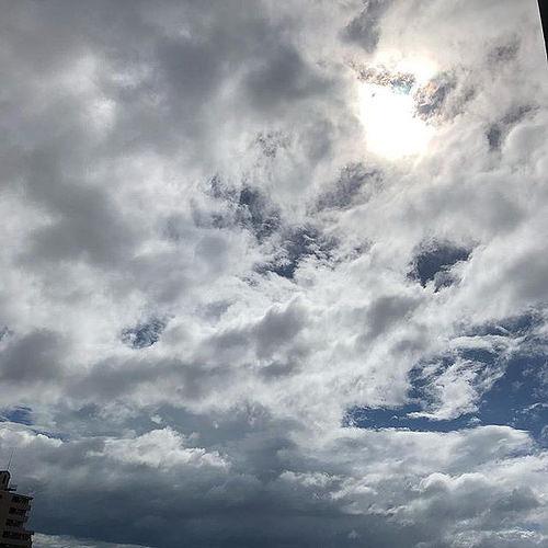 台風 photo